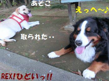 ココ涼し~!!