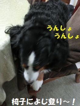 椅子に乗ってっと・・・