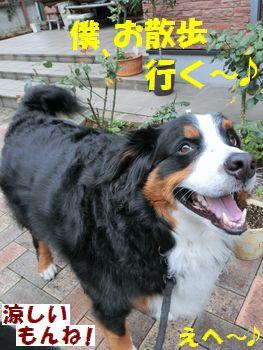 お散歩いく~!!
