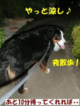 涼しいからお散歩~!!