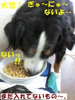 たいへんたいへ~ん!!ないよ!
