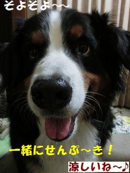 せんぷうきそよそよ~♪