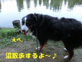 沼散歩へご~!!