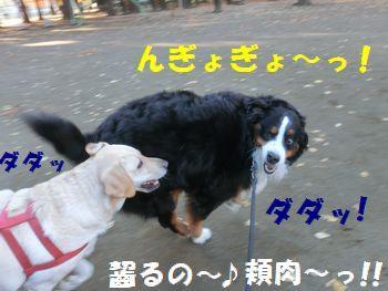 ひぃ~!頬肉キケン~!!