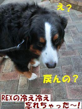 わすれもの~!?