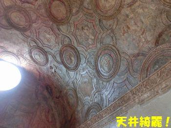 天井もとってもキレイ!!