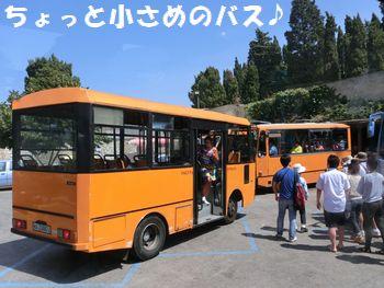 小さめバス~!
