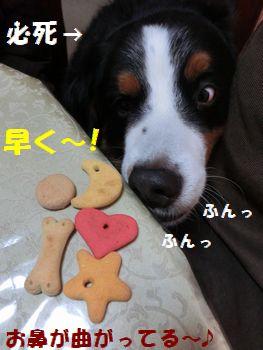 おみやげはやく~!!
