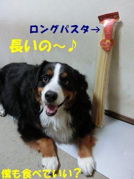 ろんぐろんぐなの~!!