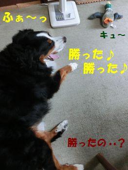 僕らくしょう~!!