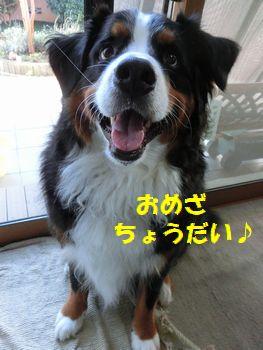 おめざもらうの~!!
