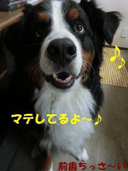 僕マテしてんの~!!