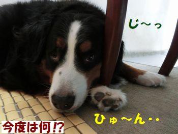 今度も狭い~!!