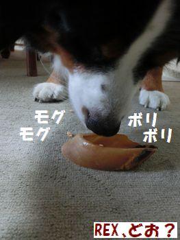 食べてみよ・・・・