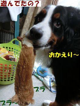 お帰りなの~!!