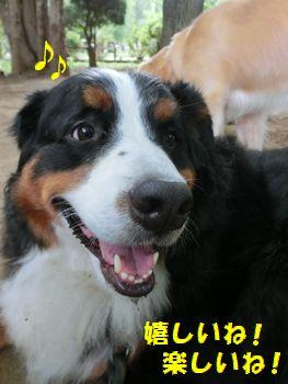 幸せな土曜日~!!