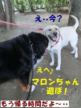 今から遊ぼっ!!
