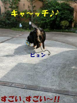 キャッチだもんね~!!