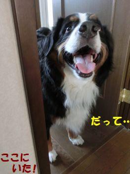 お風呂場ちかくてもいいの~!!