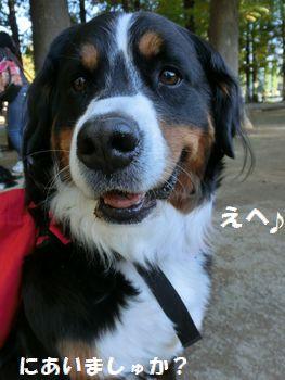 にあいましゅよ!!
