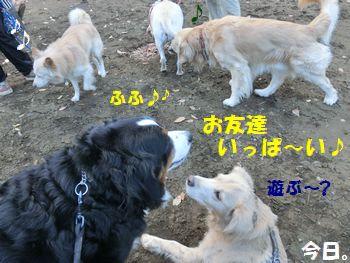 お友達がい~っぱいの土曜日!!