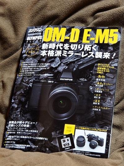 P4304664_R+.jpg