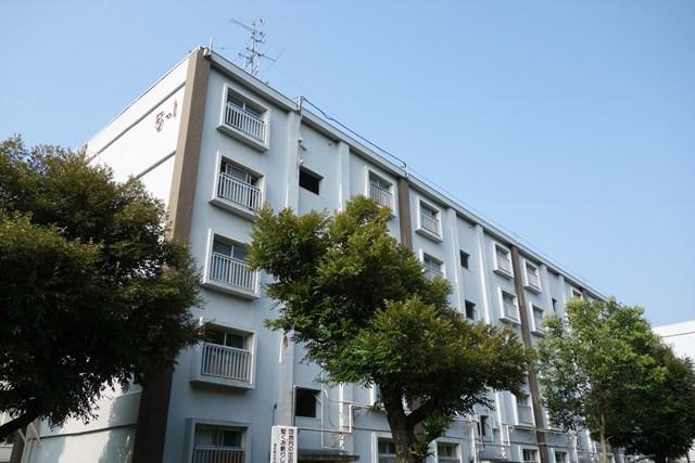 下から見た都公社小金井本町住宅の住棟