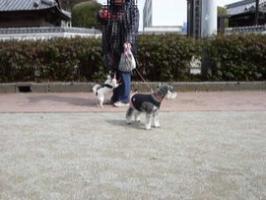 高知公園2
