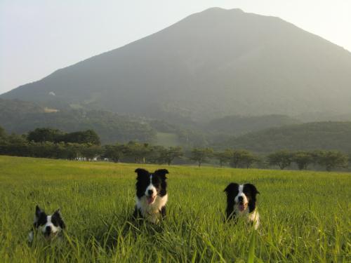 磐梯山とレディメロキャン2