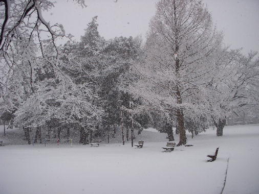 12年雪の日ー6