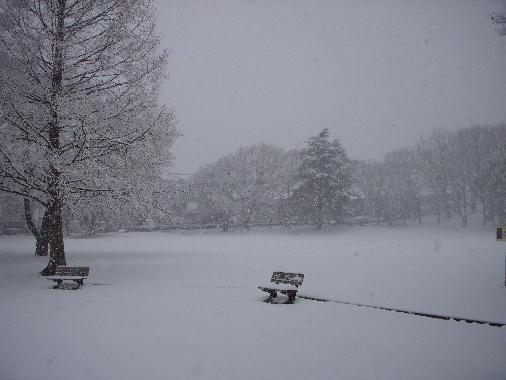 12年雪の日ー7