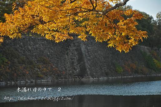 20131127094636fd3.jpg