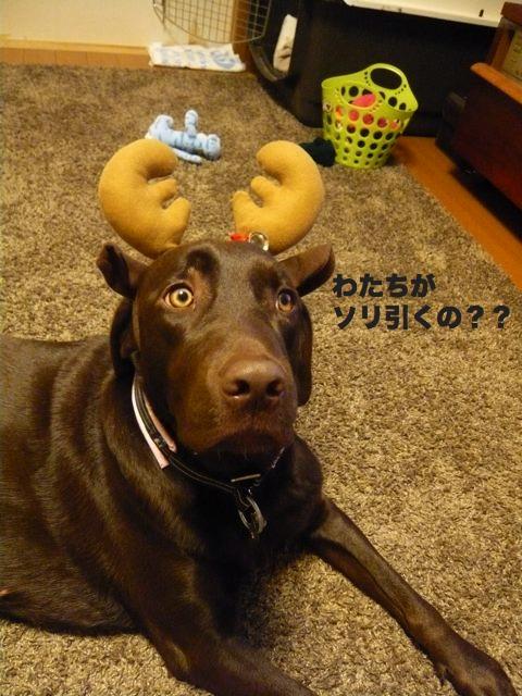 クリスマスx