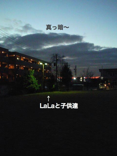 夜散歩3a