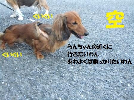 DSCF5023 (450x338)空
