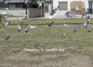 11-04-21-03_20110518221103.jpg