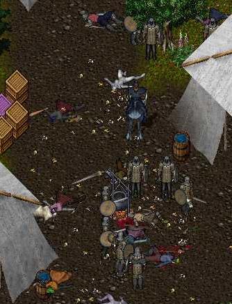 制圧されたエルフ盗賊キャンプ