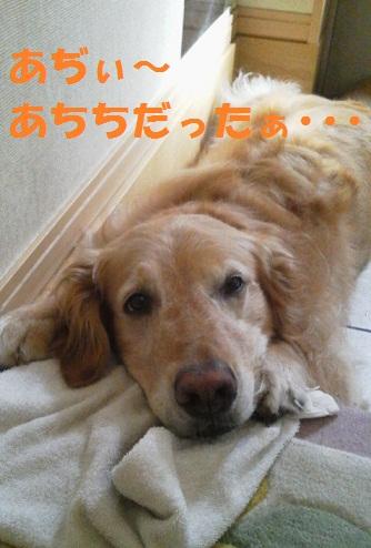 2012071306580001.jpg