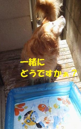 2012071610160001.jpg