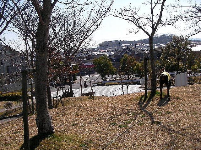 のんびり公園