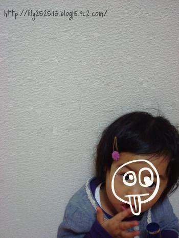 DSC01602_convert_20110131064331.jpg