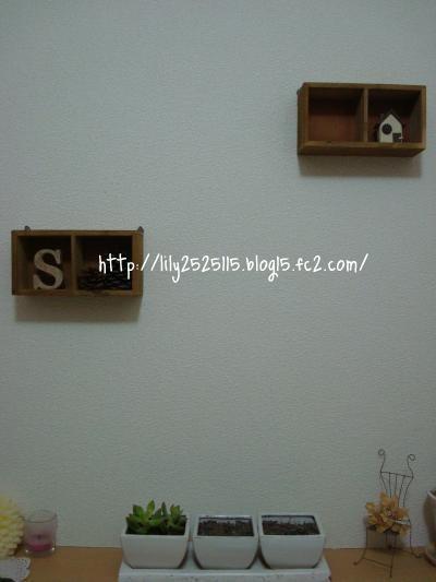 DSC01649_convert_20110206205621_convert_20110218021521.jpg