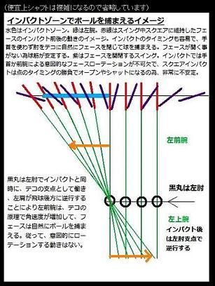 GorikichiFaceMove.jpg
