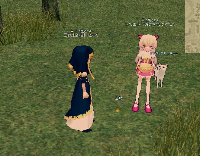 mabinogi_2010_08_12_003.jpg