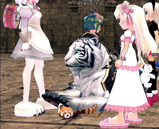 mabinogi_2010_10_08_003.jpg