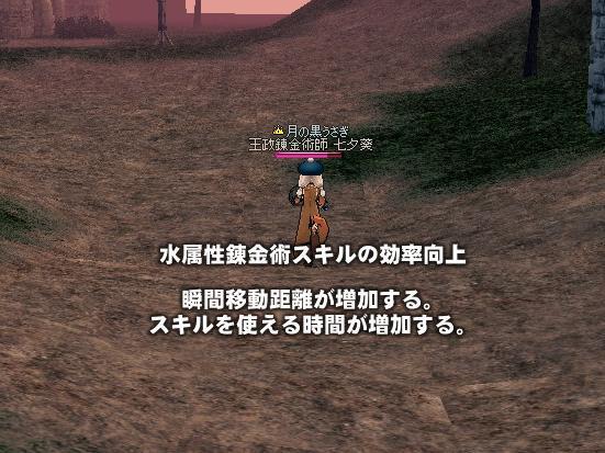 mabinogi_2010_10_22_003.jpg