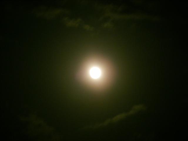 DSCF5801.jpg