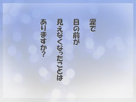 201105281.jpg