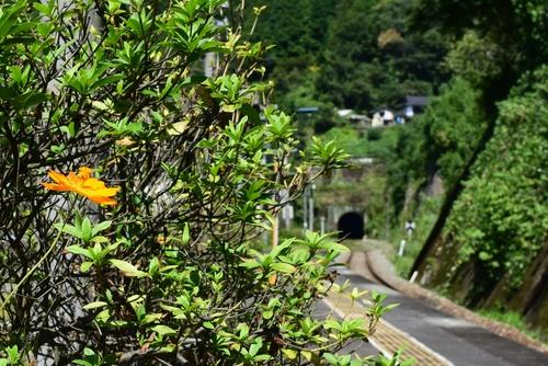 260916 日田彦山線4