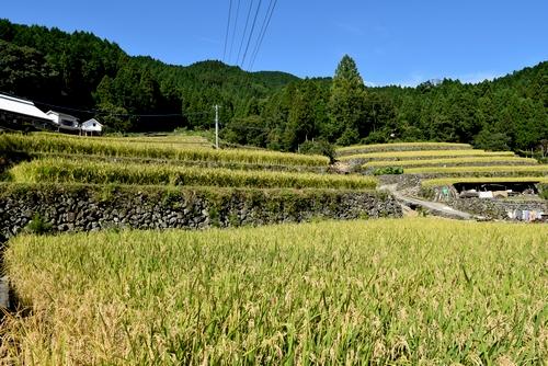 260916 小鹿田の町16